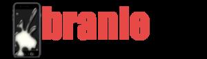Branle.fr